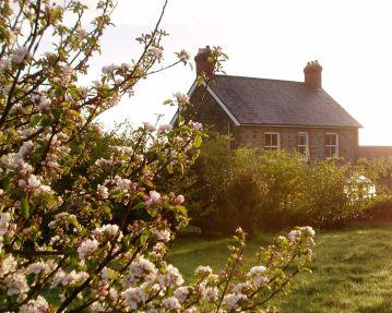 country garden ceredigion