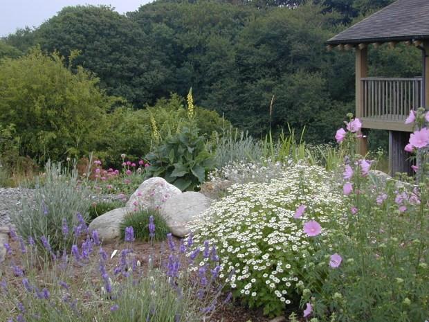 wildlife sensory garden