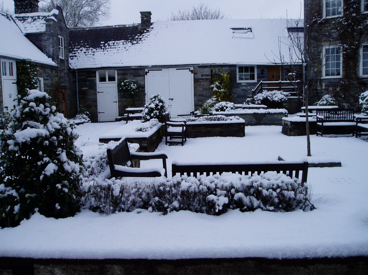 Courtyard garden snow