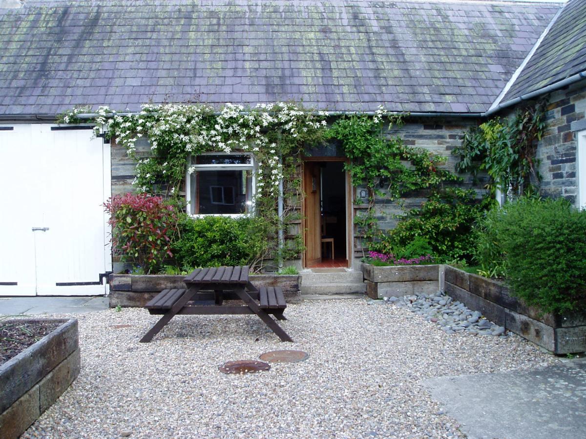 Courtyard garden Pembrokeshire