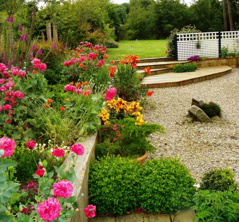 Low-maintenance garden Carmarthenshire