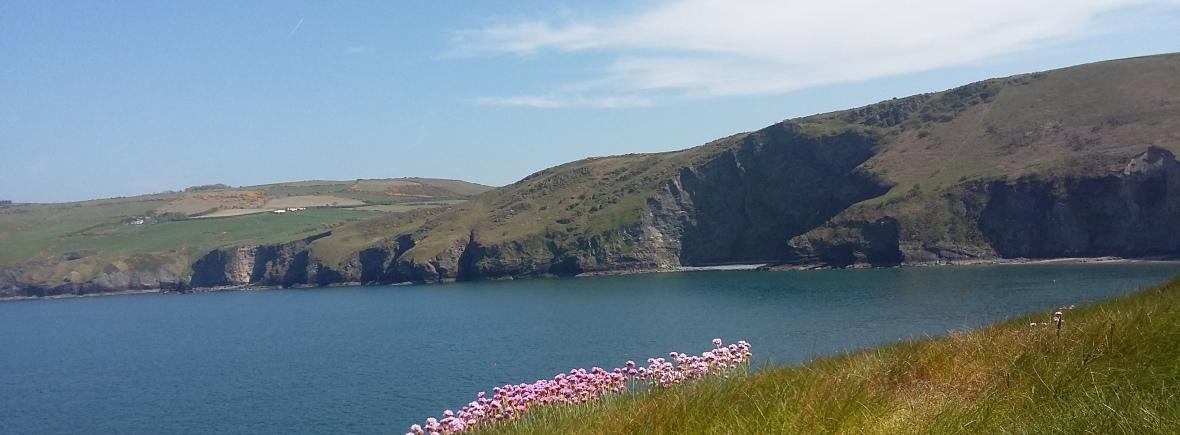 View from Ynys Lochtyn