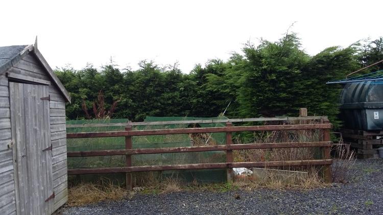 Disply garden before Beulah