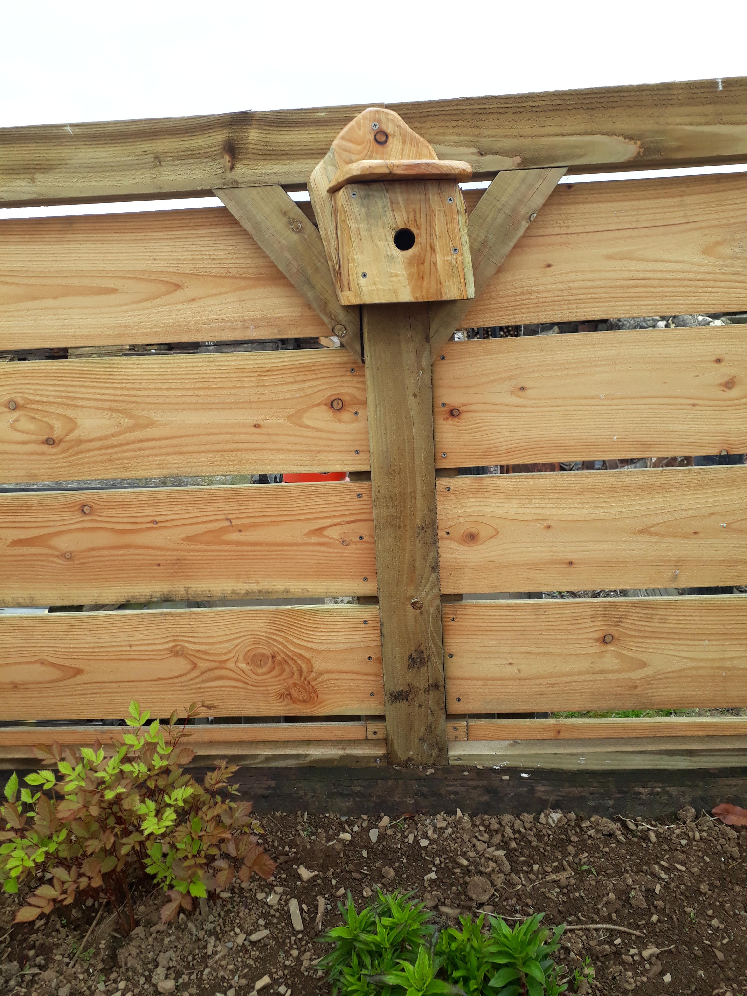 landworks-wonky-birdbox-carmarthenshire