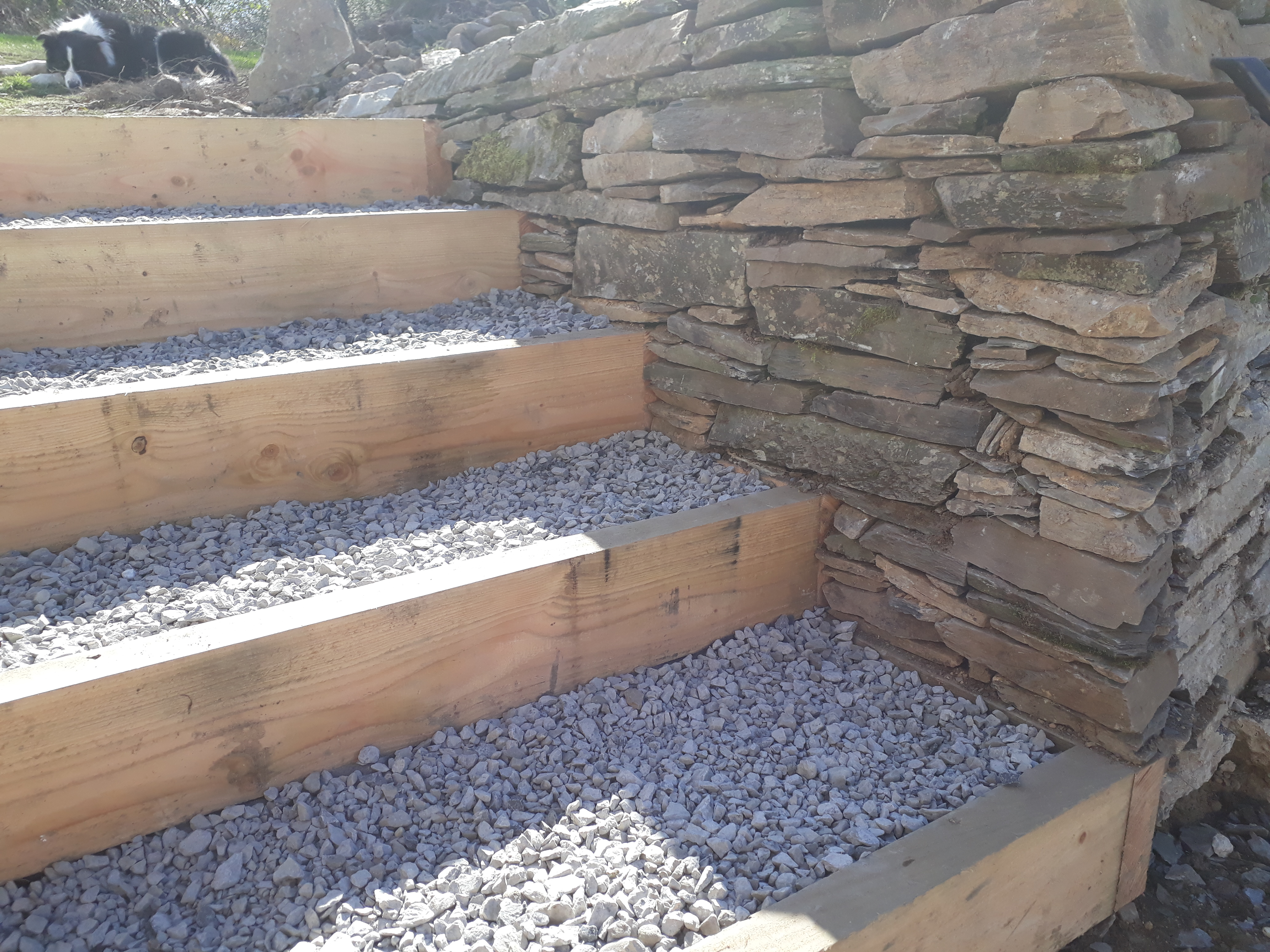 landworks-drystone-wall-llangoedmor-carmarthenshire