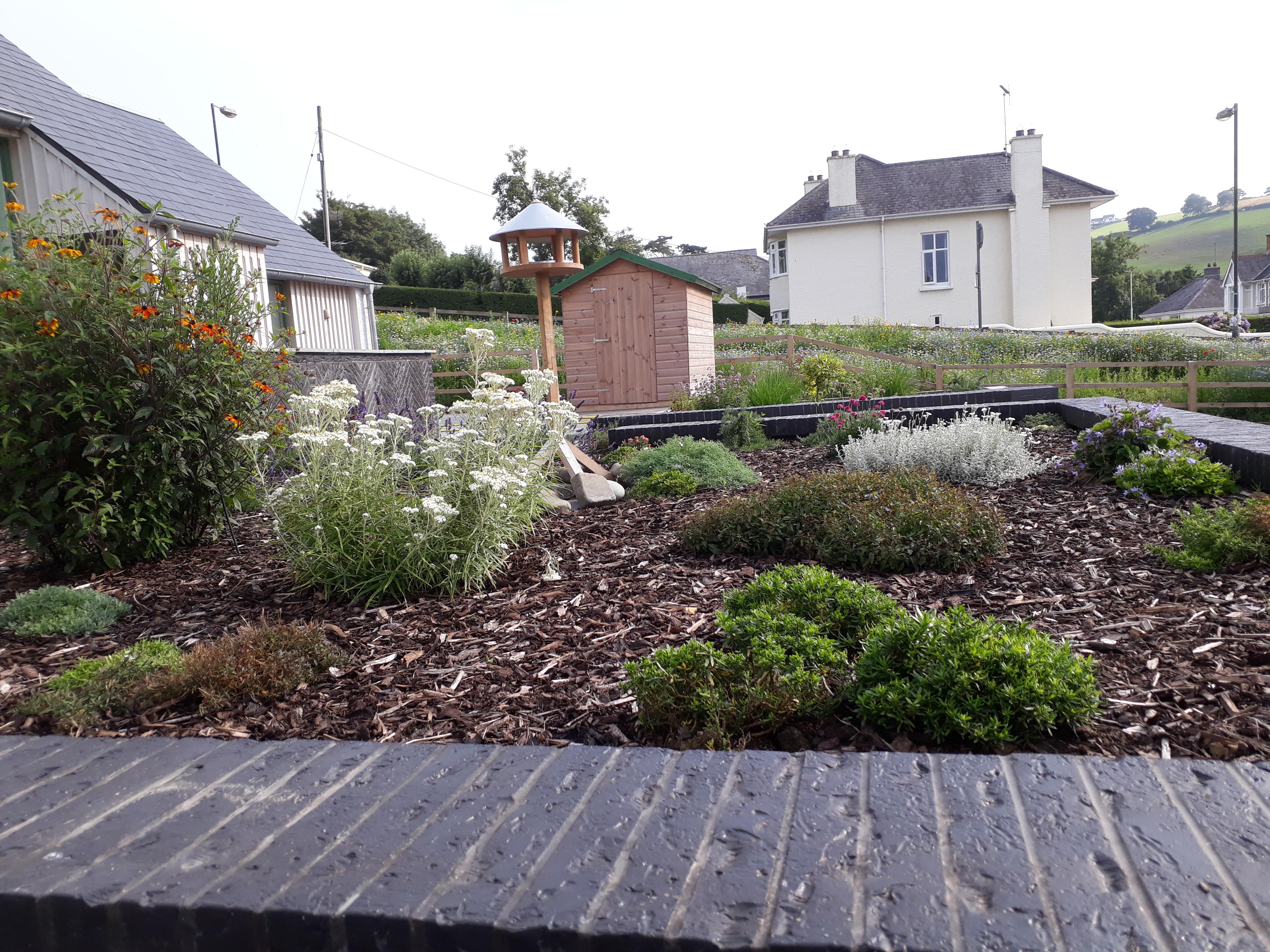 landworks-planting-aberaeron-ceredigion