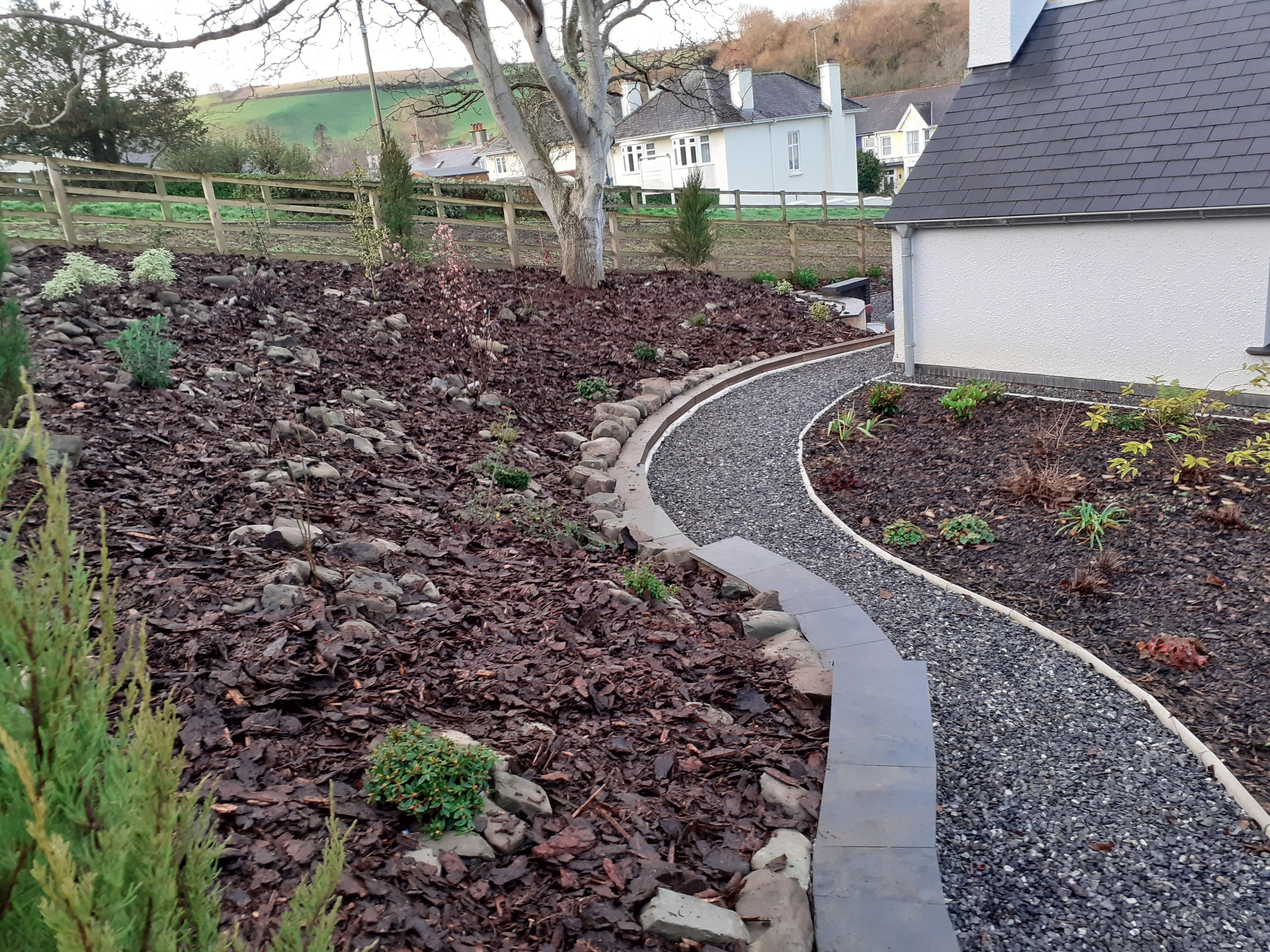 Winter planting in Aberaeron, Ceredigion