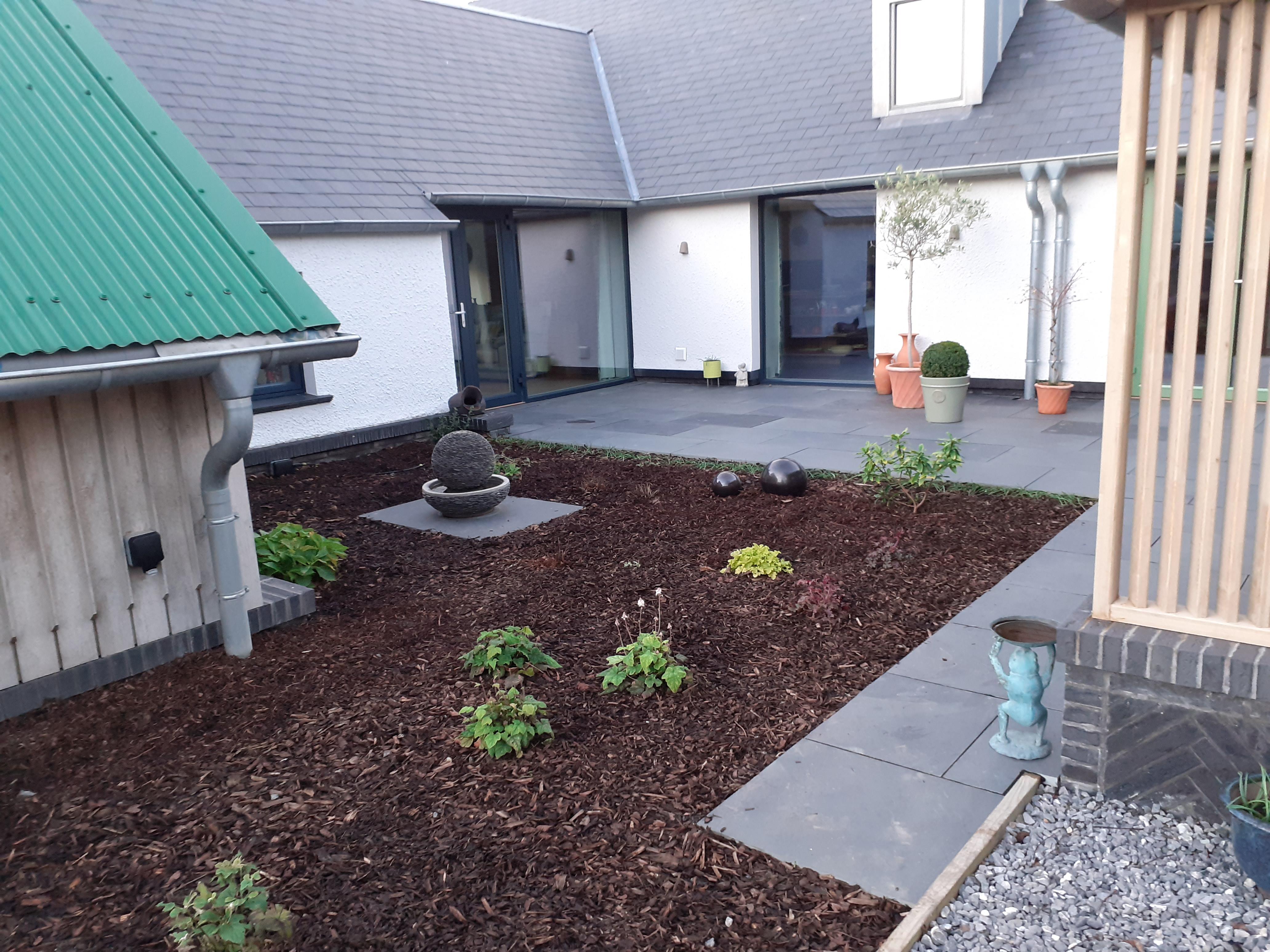 landworks-courtyard-planting-in-aberaeron-ceredigion