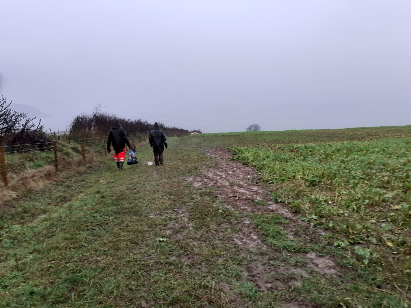 landworks-rainy-day-tree-planting-tresaith